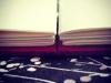 Red silk lie-flat sketchbook - interior view