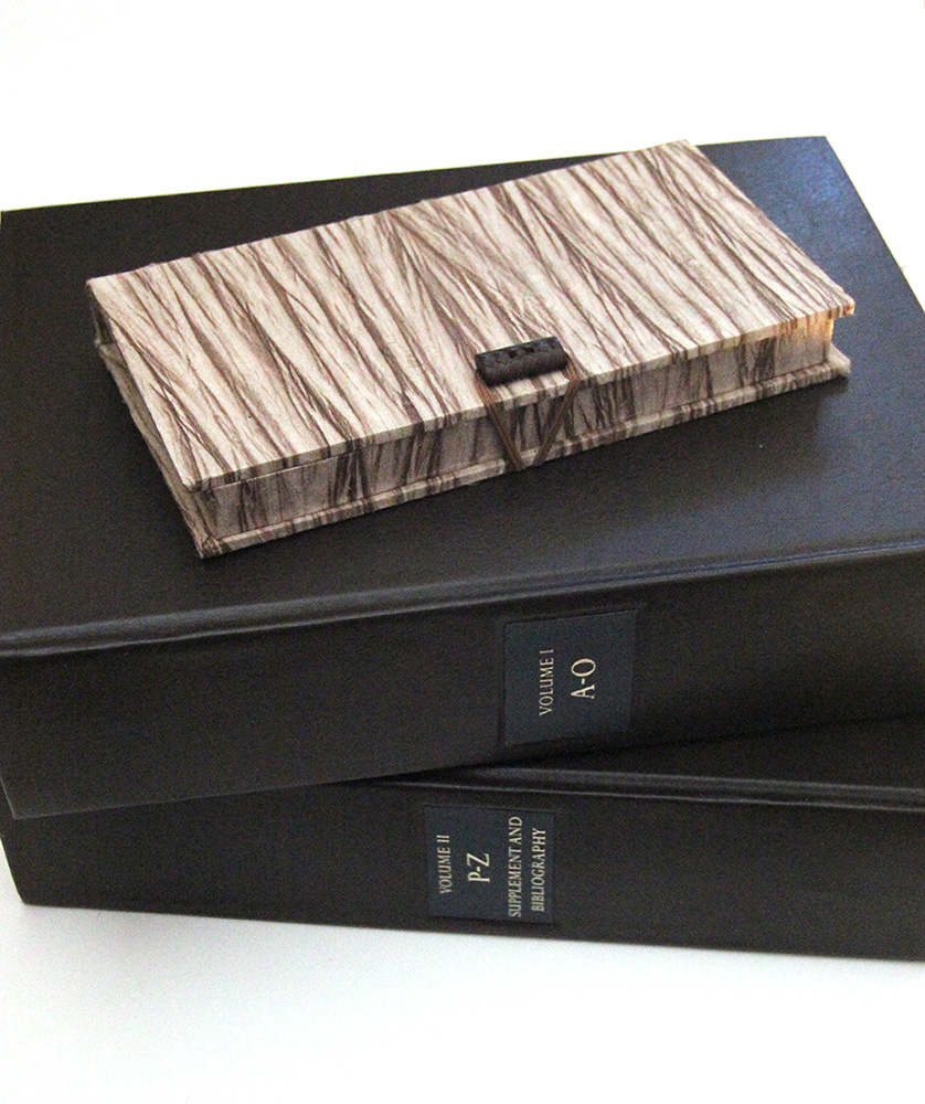 Library binding and dictionary rebinding