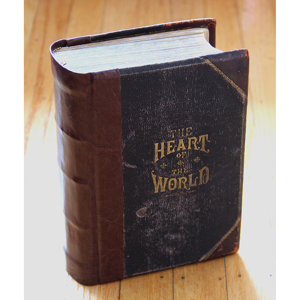 Constructional book repair of The Heart Of The World Book